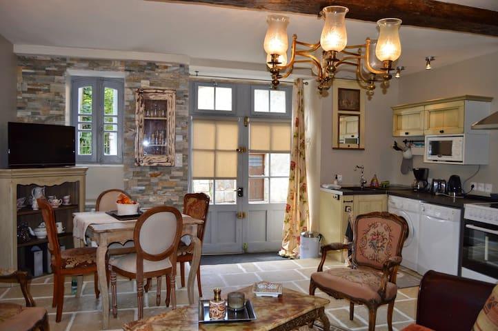 Villa Moncoeur - Le Blanc - Appartement