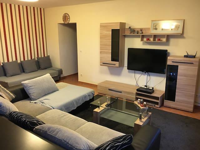 Große und ruhige Gästewohnung im Grünen - Eschau - Appartement