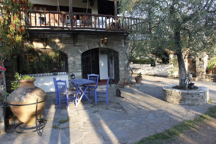 House in an olive grove, near the sea - Chalkidiki - Casa