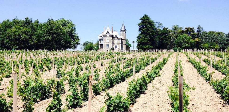 Chateau Breduriere - Moutiers-sur-le-Lay - Bed & Breakfast