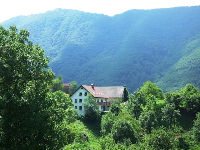 Hisa Brdo  (Double en suite Room) - Grahovo ob Bači - Bed & Breakfast