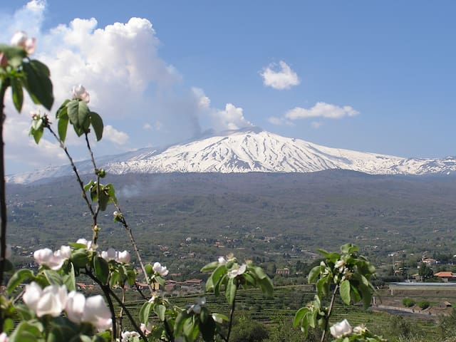 Family Eco Farm Facing Etna&Ocean - Piedimonte Etneo - Домик на природе