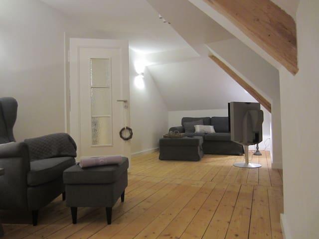 Helles Altbau-Dachgeschoss | 45 m² | 2,5-Zimmer - Darmstadt - Leilighet