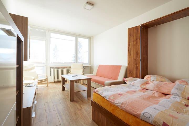 Apartmán v Jiřetíně / Tanvaldský Špičák - Jiřetín pod Bukovou - Leilighet