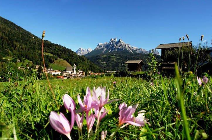 ...un Oasi di pace in Trentino! - Provincia di Trento - Bed & Breakfast