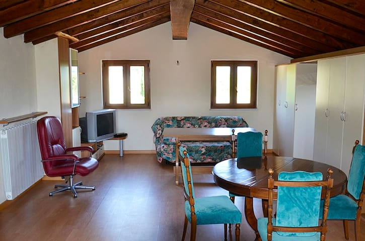 Wooden attic on Tuscanian hills - Aulla - Appartement