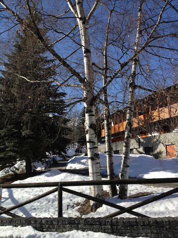 In front of the sky slopes  - Bardonecchia - Appartement