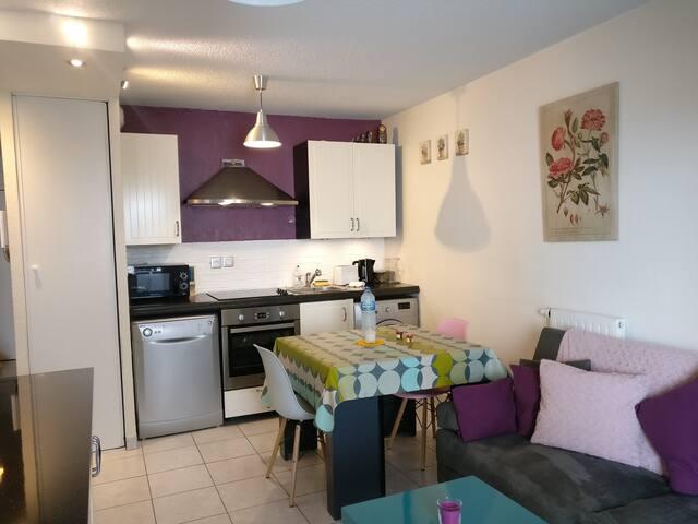 T2 au centre ville de Thonon - Thonon-les-Bains - Apartemen