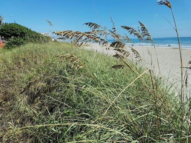 Beachside Family Getaway - Мельбурн-Бич - Дом