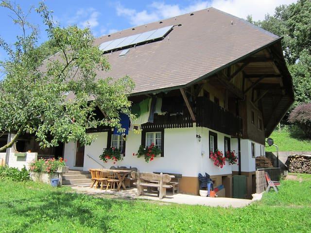 Lovely Black Forest Farmhouse    - Kirchzarten - Ev