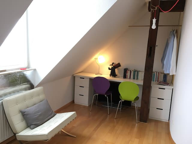 Helle, freundliche Maisonettewohnung - Breisach - Appartement