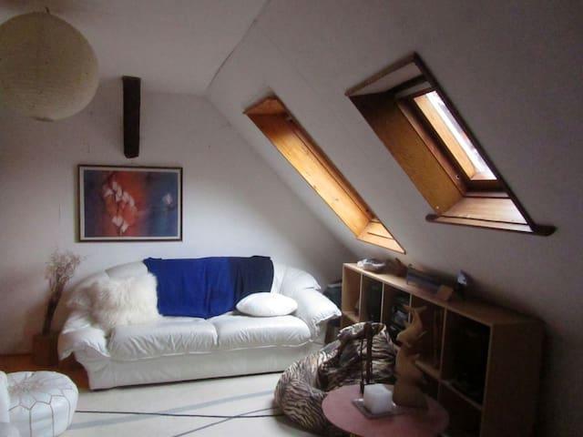 Quiet and Beautiful doublebed room - Ammerschwihr - Huis