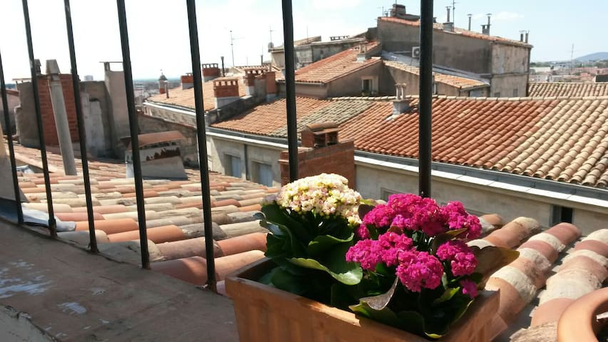 Studio cosy avec sa terrasse   - Montpellier