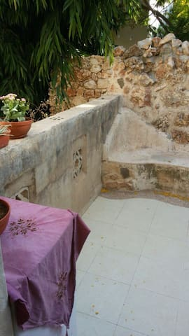 Gauls in the galil - Tel Aviv District - Departamento
