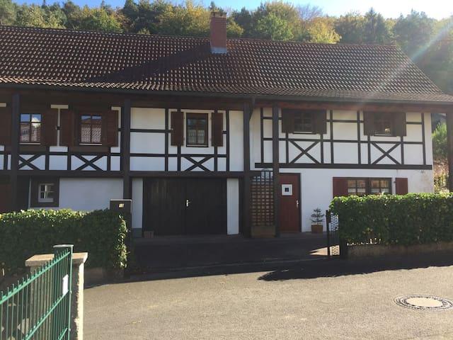 Ferienwohnung im Herzen des Pfälzer Waldes - Schönau (Pfalz) - Apartemen