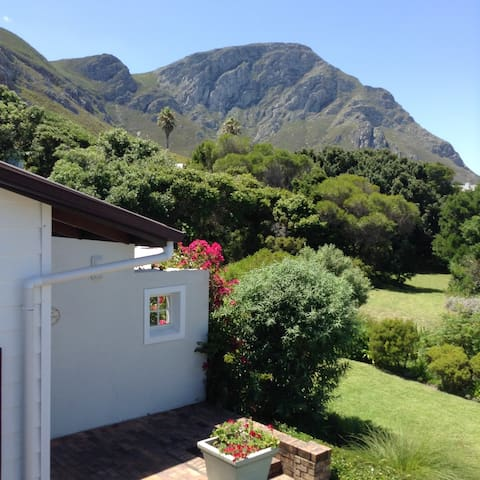 Walk to the beach and famous cliff path - studio - Hermanus - Daire