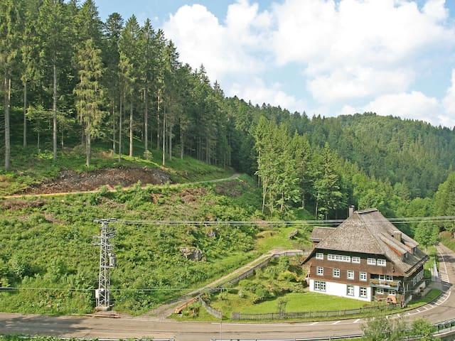 Historische Sagemuhle 4418.1 - Furtwangen - Apartamento