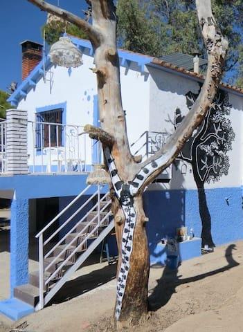 Alojamiento en Caspe  - Caspe - Haus