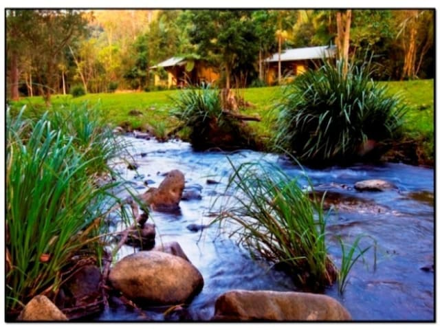 Cottages on the Creek - Cottage 2 - Currumbin Valley - Houten huisje