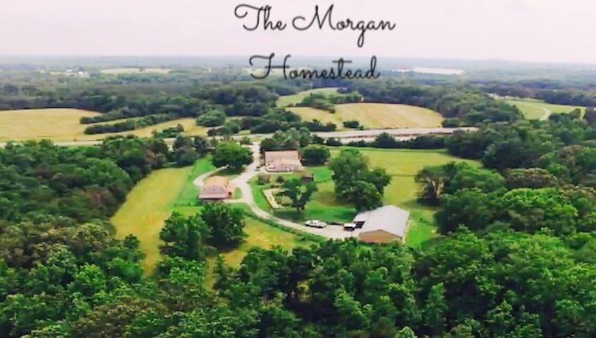 Morgan's Homestead - Heart of VA! - Rice - Apartament