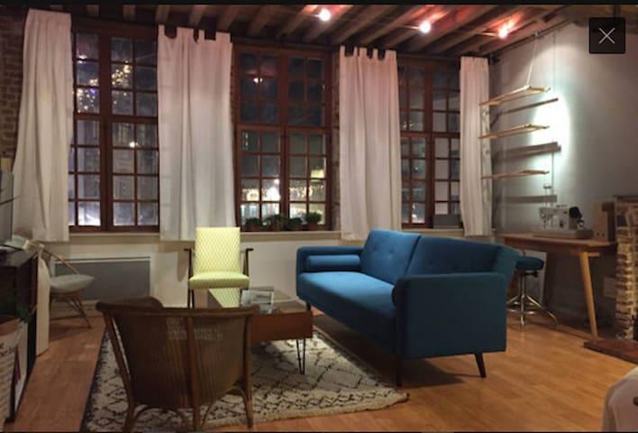 Appartement atypique Lille - Lille - Huoneisto