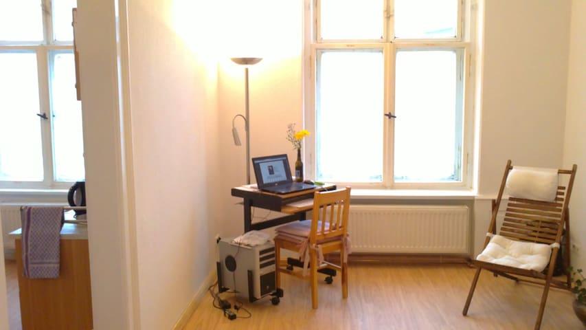 Helle kleine gemütl. Altbauwohnung mit Küche & Bad - Zittau - Departamento
