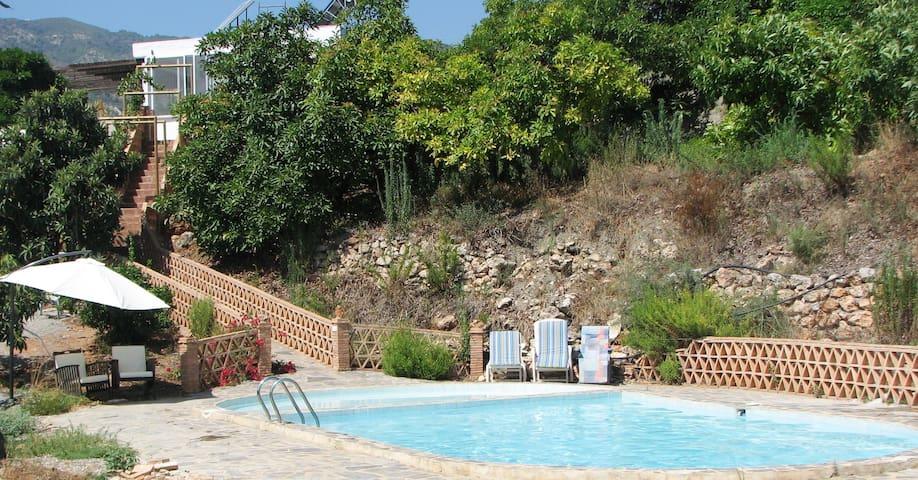 Traditional Cortigo, swimming pool - Malaga