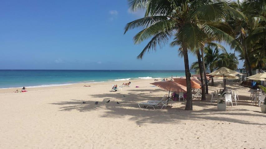 Tropical Local Lifestyle Experience - San Juan - Ev