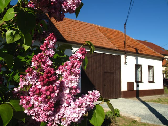 Cosy cottage with great garden and winery beside - Radějov - 牧人小屋