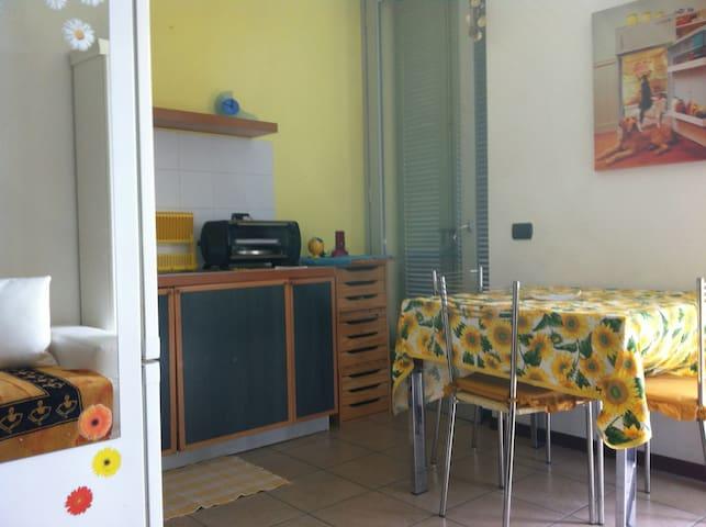Grazioso appartamento sul lago maggiore - Sesto Calende - Daire