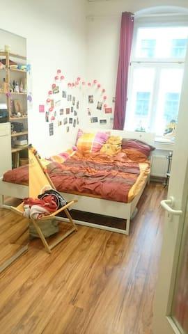 Gemütliches Zimmer in harmonischer Wg & super Lage - Magdeburg - Wohnung