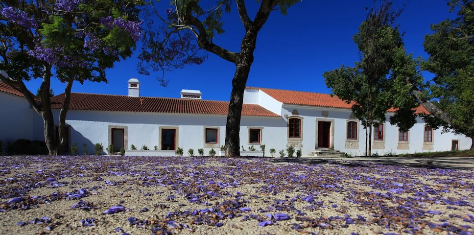 Stunning 18th Century Manor House - Manique do Intendente - Aamiaismajoitus