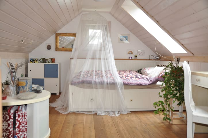 Rooftop-room in Riverside House - Regensburg - Bed & Breakfast