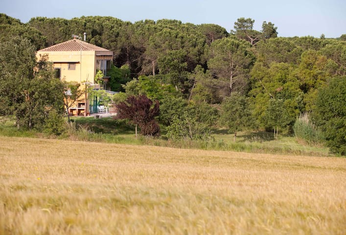Bio-rural apartment together forest - Vidreres - Rumah