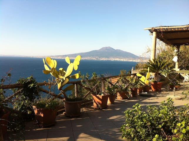piccola villa nel verde  sul golfo di Napoli - Vico Equense - Rumah