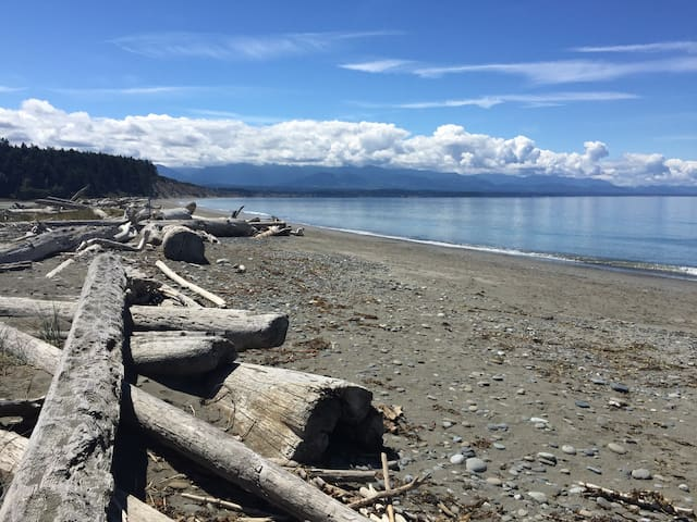Large Sequim home with  mountain and water views. - Sequim - House