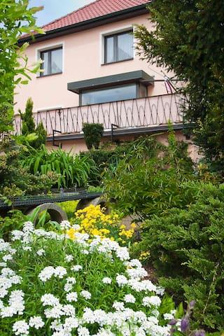 Great apartment in Zwickau - Zwickau - Appartement