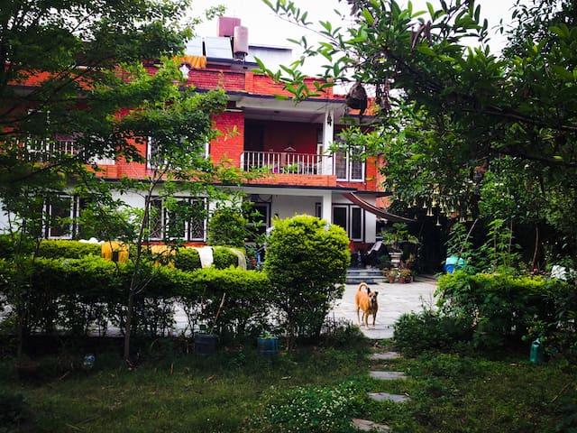 House with garden, trees n Flowers - Kathmandu