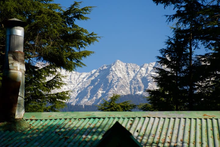 Secluded mountain cottage + breakfast, Dharamsala - Dharamshala - 家庭式旅館
