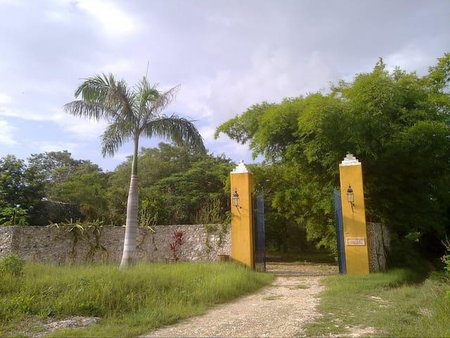 Hacienda Masul en Yucatán - Umán - Diğer