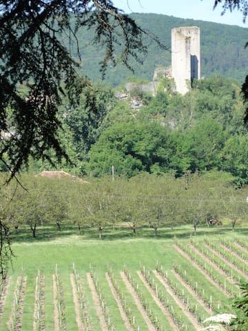 Tussen de wijnvelden van Zuid-Frankrijk - Luzech - Leilighet