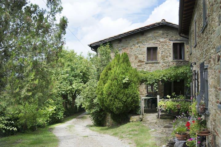 """""""Il vecchio appartamento"""" breathe Tuscan history - Vicchio - Apartment"""
