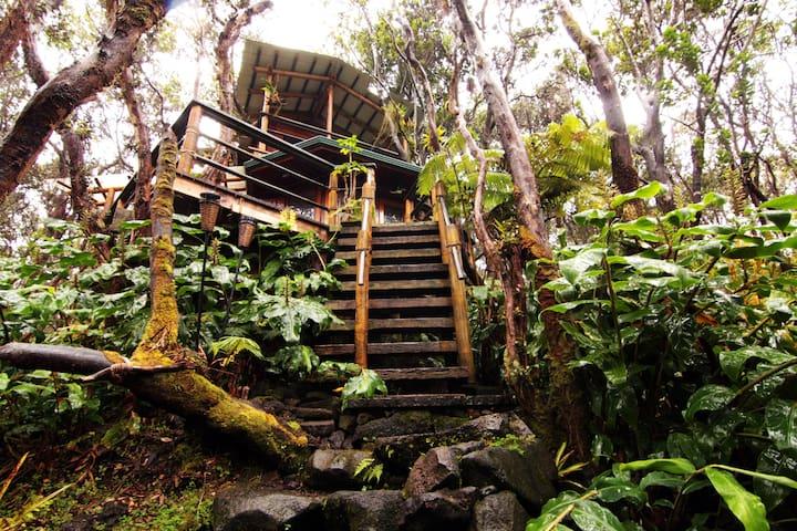 Treehouse at Kilauea Volcano - Волкано - Домик на дереве