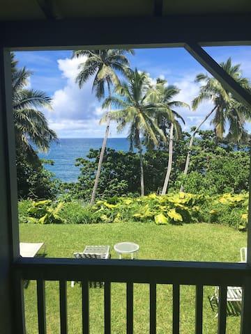 Relaxing Oceanfront getaway in Hana - Hana - Casa