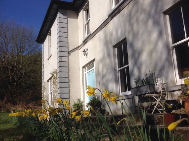 Serene woodland country retreat - Abbeyleix  - Hus