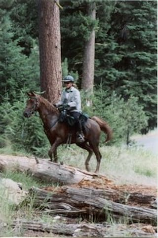 Horseback into the Enchanted Forest - Grants Pass - Treehouse
