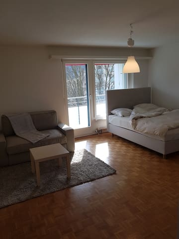 Apartment Sunshine with Balcony - Oberengstringen - Appartement