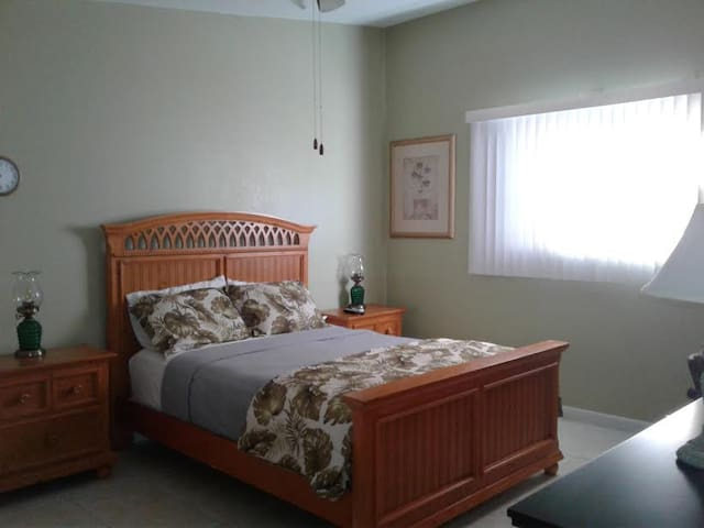 Charming, naturally well-lit guest home! - Tarpon Springs - Daire