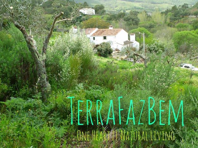 TerraFazBem    One Heart - Natural Living