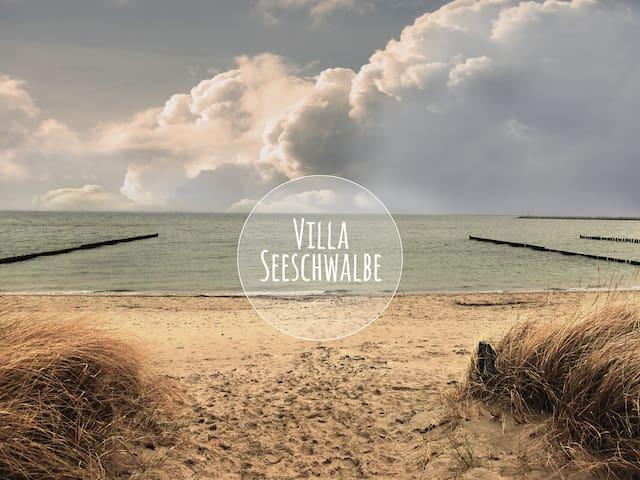 Villa Seeschwalbe Breege-Juliusruh - Breege - Lejlighed